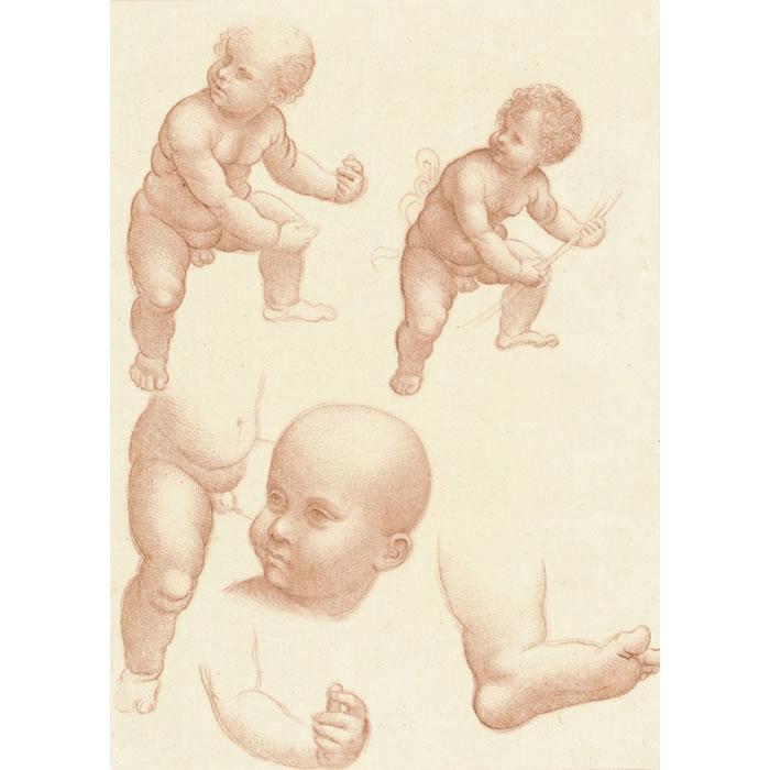 Study of a child - Une estampe d'après Leonardo da Vinci