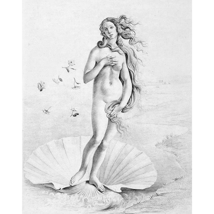 Naissance de Vénus. Fragment - Une estampe d'après  Botticelli