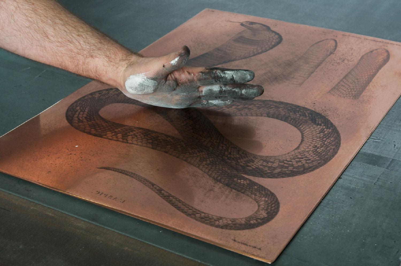 Chalcographie du Louvre | Le paumage d'une plaque encrée avant l'impression