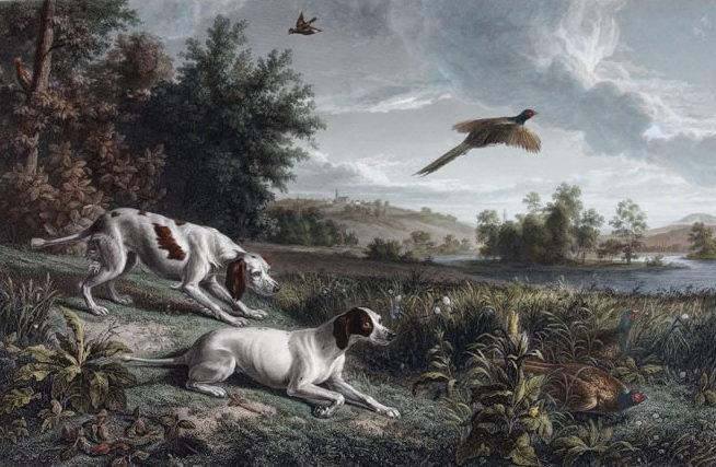 Diane et Blonde, chiennes de Louis XIV